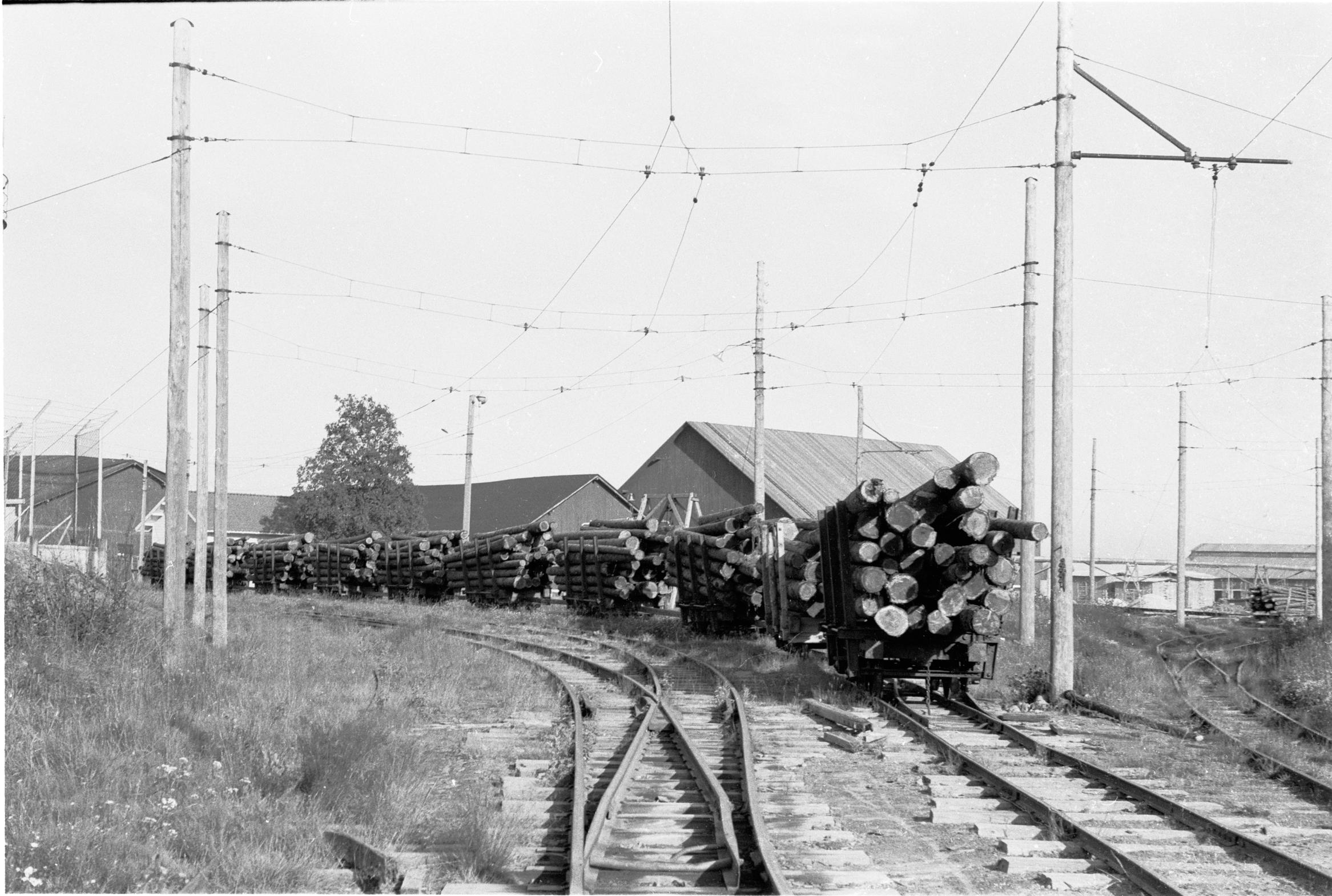 Tågbild Sikeå hamn nr 4 1960 timmervagnar